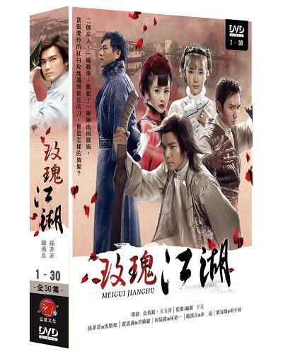 玫瑰江湖+龍票 DVD ( 鐘漢良/孫菲菲/霍思燕/何晟銘/劉冠翔+黃曉明/秦嵐/修慶 )