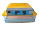 現貨-孵化神器/全自動孵化機/一鍵孵蛋/60枚/雞鴨鵝鳥蛋/滾軸翻蛋/家用110V