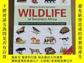 二手書博民逛書店WILDLIFE罕見of southern Africa 南部非洲的野生動物Y280742 Vicent ca