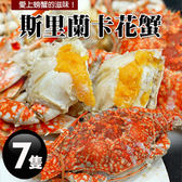 【屏聚美食】斯里蘭卡母花蟹7隻(200-250g/隻)超值免運組