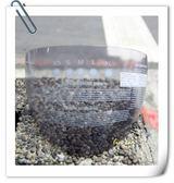 M2R安全帽,J1-V,j1v,專用茶色鏡片