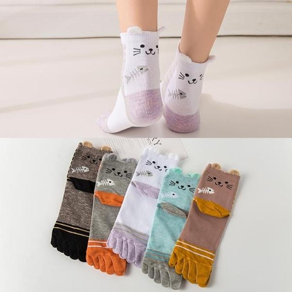 五指襪女士中筒純棉春秋冬季透氣吸汗防真菌分腳趾襪五指女中筒棉  夏季新品
