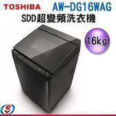 【信源】16公斤 TOSHIBA 東芝 SDD超變頻洗衣機 AW-DG16WAG 不含安裝