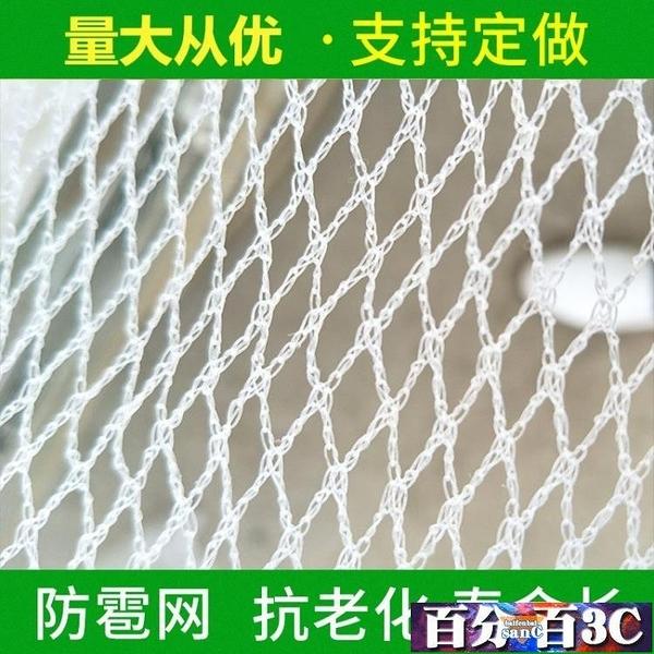 防鳥網 防雹網果園防鳥網葡萄網園藝防冰雹網白色聚乙烯 百分百