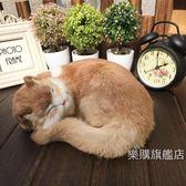 動物模型毛絨玩具貓咪仿真貓咪玩具模型桌面車飾擺件動物貓咪