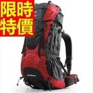 登山背包極簡簡約-旅行戶外大容量休閒後背包3色57w5【時尚巴黎】