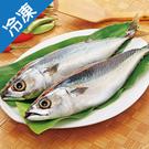 南方澳鹹鯖魚(350g±5%)/尾【愛買...