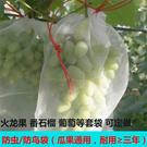 尼龍網袋火龍果套袋專用套果袋葡萄套袋水果套袋防果蠅防蟲防鳥袋 果果生活館