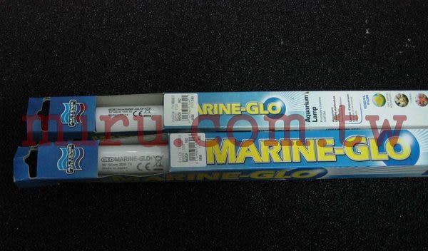 【西高地水族坊】Hagen赫根 珊瑚培養T8燈管(藍燈)(30W)