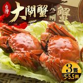 台灣珍稀大閘蟹*3隻組(5-5.5兩/隻)-死蟹包退