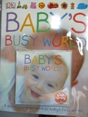 【書寶二手書T8/少年童書_PGU】Babys Busy World_Dawn Sirett