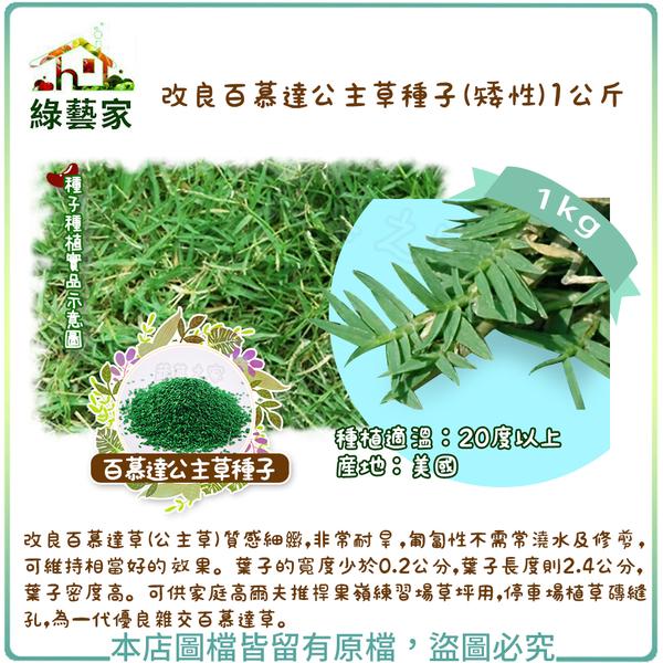 【綠藝家】改良百慕達公主草種子(矮性) 1公斤裝