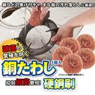 日本 AIMEDIA 艾美迪雅 硬銅刷5個入 抑菌/鍋刷/球刷/金屬刷