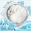 PetLand寵物樂園《日本寵喵樂》2017年最新 99.5%鋁合金貓鍋 貓咪圓形涼墊-加強款涼度