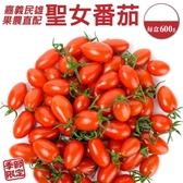 【果農直配-全省免運】嘉義民雄溫室玉女小番茄X4盒(600g±10%含盒重/盒)
