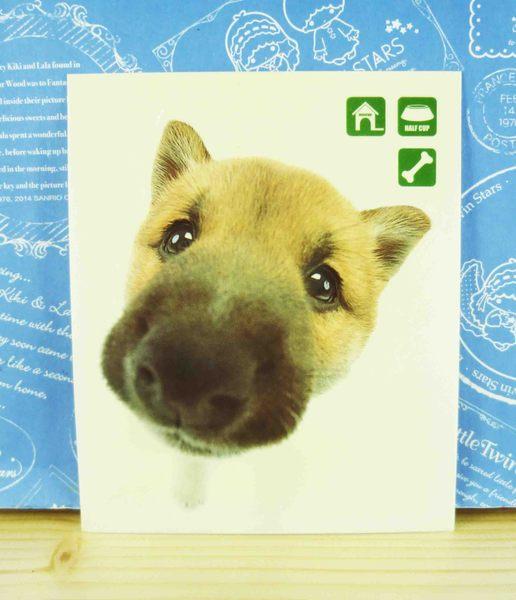 【震撼精品百貨】新大頭狗_The Dog~貼紙-柴犬綠