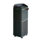 【Electrolux 伊萊克斯】 PURE A9高效能抗菌空氣清淨機PA91-606DG(贈濾網)