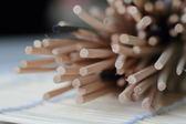 karoli 卡蘿萊 直條藤條  擴香籐&擴香竹&薰香竹 擴香水竹精油專用~純天然 3mm直徑 100支