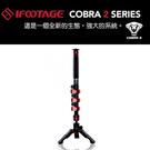 【EC數位】IFOOTAGE Cobra 2 A120 鋁鎂合金單腳架套組 單腳架 登山杖 眼鏡蛇2代 鋁合金