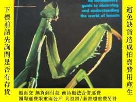 二手書博民逛書店Practical罕見Entomologist【實際的昆蟲學家】