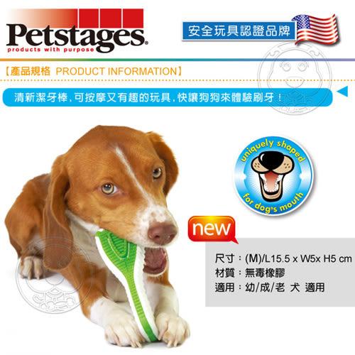【培菓平價寵物網】美國petstages》1082耐咬潔牙玩具/清新潔牙棒-M/號