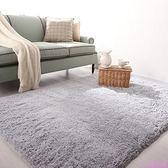 可水洗 不掉色 絲毛地毯地墊客廳茶幾臥室床邊地毯