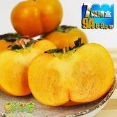 鮮採家 特級摩天嶺高山甜柿7顆禮盒(9A,單顆8-9兩)