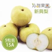 沁甜果園SSN.苗栗卓蘭新興梨(15A,9粒裝)﹍愛食網