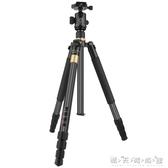 輕裝時代Q222C單反相機佳能尼康微單攝影攝像錄像便攜旅行自拍三角支架WD 晴天時尚館
