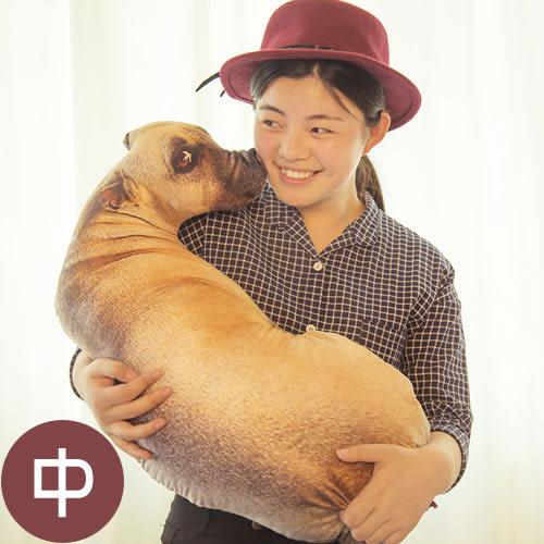 【WS16120601】 可愛創意擬真小狗造型個性抱枕 沙發靠墊 (中)