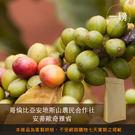 【咖啡綠商號】哥倫比亞安地斯山農民合作社...