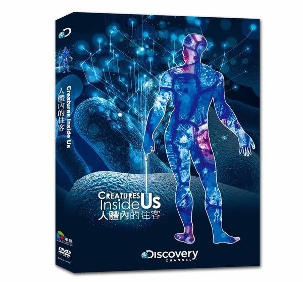 人體內的住客 DVD  (購潮8)