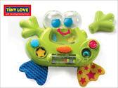 Tiny Love 智愛小青蛙玩水樂TL1042020 衛立兒 館