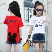 女童T恤新款夏裝小童短袖體恤夏季中大童洋氣時尚棉質上衣t恤 至簡元素