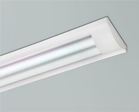 【燈王的店】 LED T8 2尺 雙管 加蓋日光燈具(附燈管) 全電壓 ☆TYL332B-W(DM商品)
