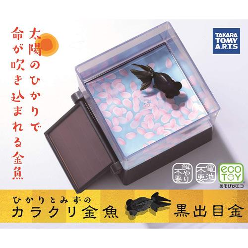 特價 T-ARTS 悠遊金魚樂 (黑出目金)_TA52342