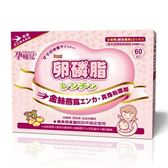 孕哺兒 卵磷脂燕窩多機能細末 4公克*60包 X 4盒