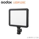 EGE 一番購】GODOX LEDP12...