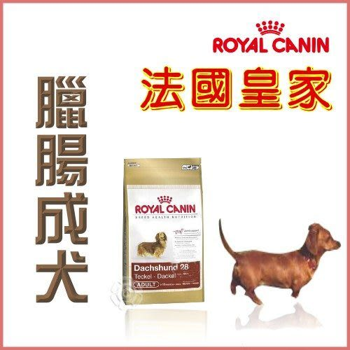 *KING WANG*法國皇家《臘腸成犬PRD28》7.5kg
