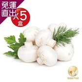 Global Fresh 特級洋菇 200g/盒,5盒/箱【免運直出】