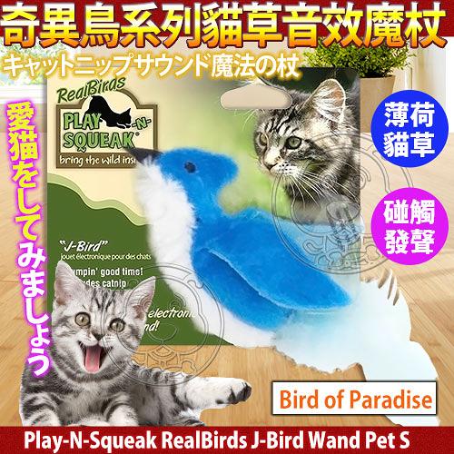 【 培菓平價寵物網 】美國Play-N-Squeak狂野森林》奇異鳥系列貓草音效魔杖-天堂鳥