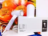 日本 TWINBIRD 雙鳥 美型蒸氣掛燙機 TB-G006TW 白色玫瑰金 盒裝 百貨公司貨