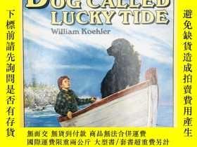 二手書博民逛書店A罕見Dog Called Lucky Tide 英文原版-《名