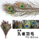 羽毛 孔雀毛 孔雀羽毛 (70-80CM...