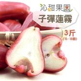 沁甜果園SSN.子彈蓮霧(3斤/箱)﹍愛食網