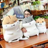 毛絨玩具 可愛倉鼠公仔布娃娃玩偶韓國毛絨玩具睡覺暖手抱枕女生禮物搞怪萌 傾城小鋪