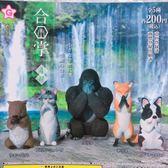 正版 YELL扭蛋 YELL 動物們的祈禱合掌 動物合掌4 第四彈 療癒公仔擺飾 全套5款 COCOS TU002