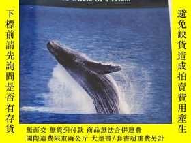 二手書博民逛書店northern罕見star a whale of a tale