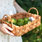 半房雜貨日式原木片雙提手工編織收納籃水果面包菜籃子野餐置物筐