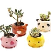 CARMO超可愛小動物花盆(含底盤) 多肉植物盆栽【CI07009】